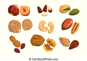 Flat vector icons of nuts and seeds. Hazelnut, pistachio,...