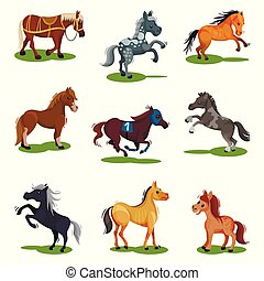 Flat vector set of horses in various poses. Hoofed animals isolated. Mammal creatures on green grass