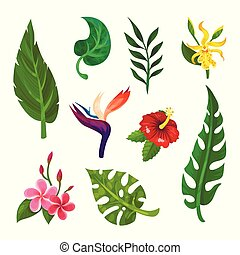 Flat vector set of tropical blooming flowers and green leaves. Botanical or gardening theme. Elements for book, postcard or poster