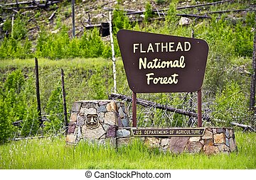 Flathead National Forest