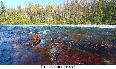 Flathead River of Montana - Rapids of the North Fork...