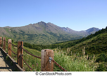 Flattop Trail - View from the hiking trail on Flattop...