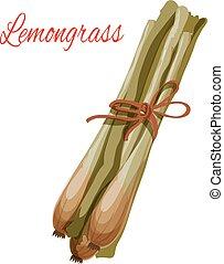 flavoring, ícone, erva, vetorial, lemongrass, tempero