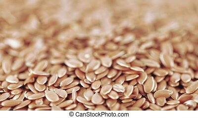 Flax seeds in bulk - Seeds for germination or for brewing...