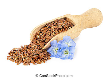 flax seeds in scoop