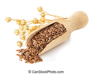 flax seeds in scoop