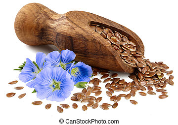 flax seeds in wooden scoop with flower isolated on white background