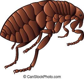 Flea - Vector image of simbol of  brown flea