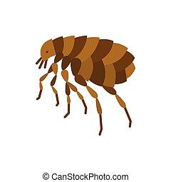 Flea insect parasite single flat color vector icon