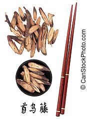 Fleece Flower Stem - Fleece flower stem chinese herbal...