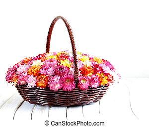 flerfärgad, blomningen