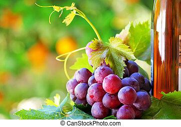 fles van wijn, met, druiven