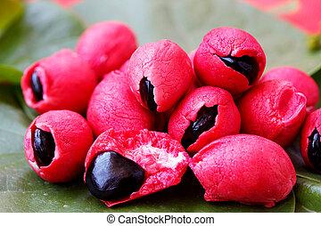 Fleshy and pulpy Mexican origin fruit - Camachile - Fleshy...