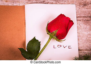 fleur, Amour, texte, cahier,  rose, rouges