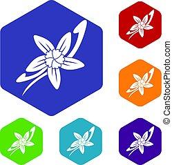 fleur, bâtons, icônes, vanille, ensemble, hexagone