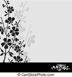 fleur, blanc, vecteur, cadre