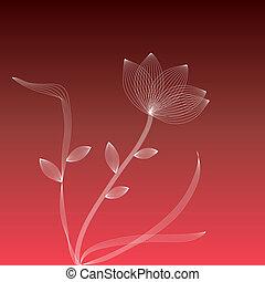 fleur blanche, arrière-plan rouge