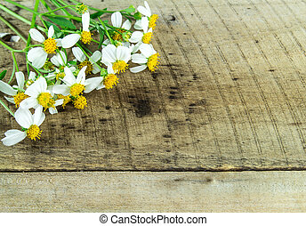 fleur blanche, sur, bois, fond