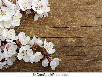 fleur, bois