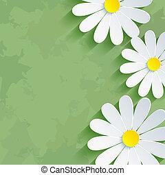 fleur, camomille, vendange, arrière-plan vert, floral