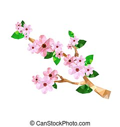 fleur, cerise, branche, illustration, origami