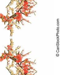 fleur, cerise, jade, 11