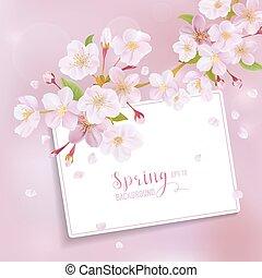 fleur, cerise, -, printemps, vecteur, fond, texte, ton, carte