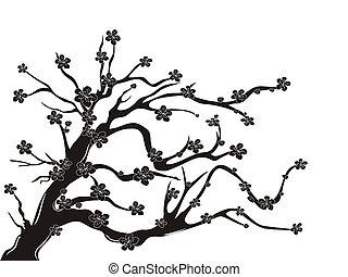 fleur, cerise, silhouette, arbre