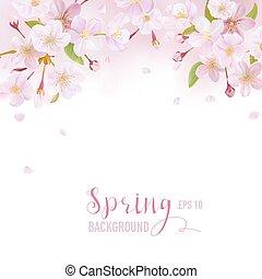 fleur, cerise, -, vecteur, endroit, fond, printemps, texte, ton