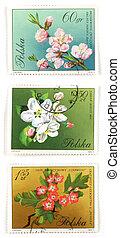 fleur, collectable, poste, arbre, timbres