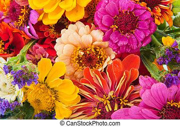 fleur, coloré, arrangement