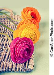 fleur, coloré, osier, ranunculus, vendange, plateau