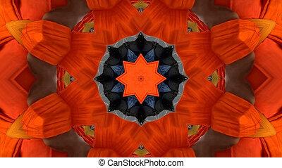 fleur, coloré, résumé, mouvement, flore, fond