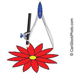 fleur, compas