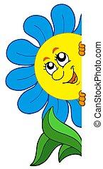 fleur, dessin animé, observer