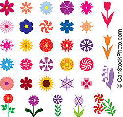 fleur, ensemble, multicolore