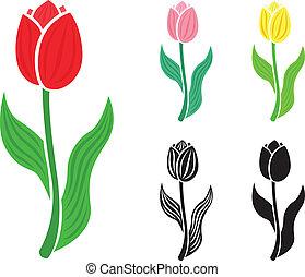 fleur, ensemble, tulipe