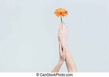 fleur, femme, tenant mains