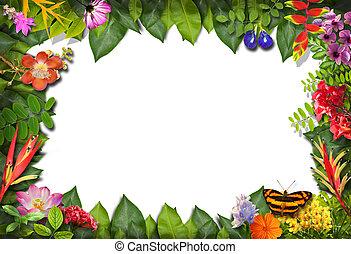 fleur, feuille, nature, arrière-plan vert, frontière