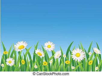 fleur, fond, nature