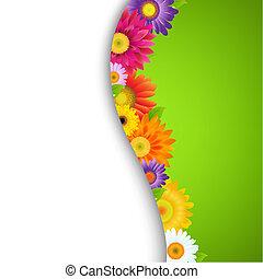 fleur, frontière, coloré, gerbers
