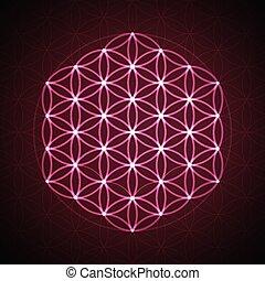 fleur, géométrie, symbole., vecteur, sacré, life.