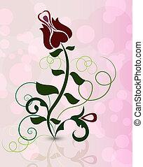 fleur, illustration., rose, résumé, pinky, vecteur, fond
