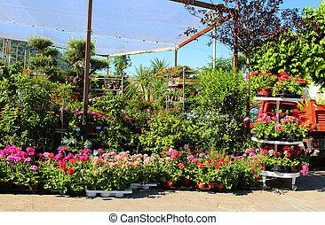 fleur, italie, marché, capri