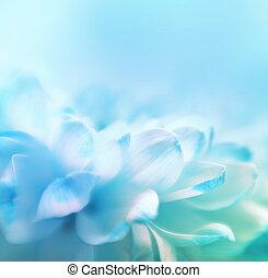 fleur, lensbaby, macrolens., foyer, space., fait, fond, wth, copie, doux