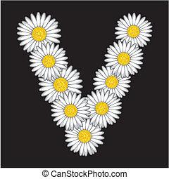fleur, lettre, pâquerette
