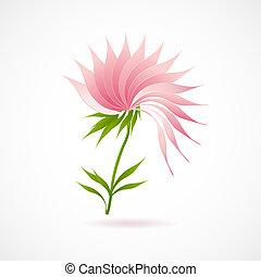 fleur, lotus, résumé, isolé, blanc, icône