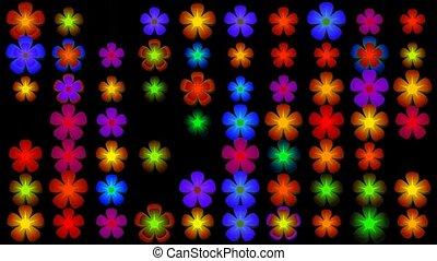 fleur, lumière, clignotement, néon, boucle, fond