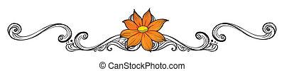 fleur orange, frontière