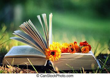 fleur, ouvert, Livre, herbe